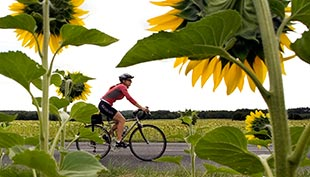 Loire Valley Biking Trip